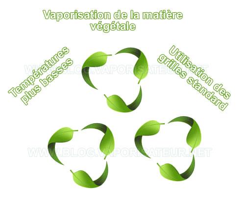 Les règles de bonne vaporisation de la matière végétale
