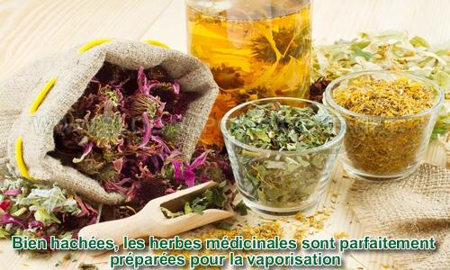 Les herbes médicinales en vaporisation